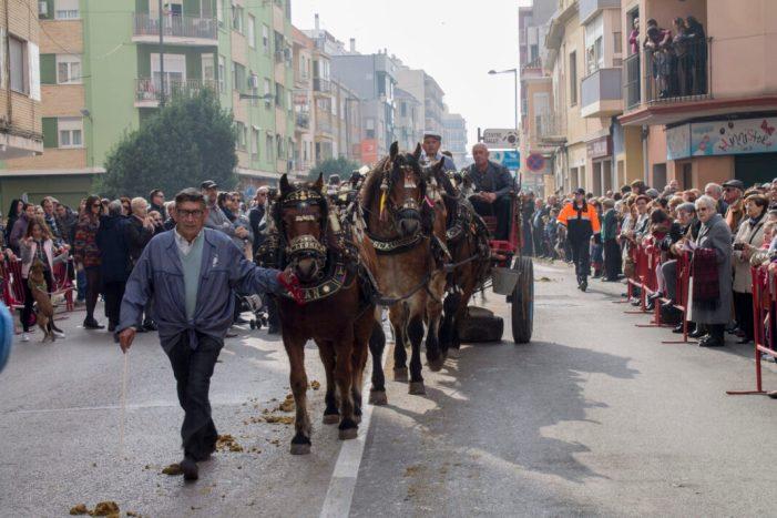 Sueca celebra un any més la festivitat de Sant Antoni Abat.