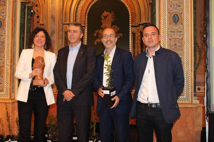 """Alzira rep el premi al """"Bon Govern"""" de la FVMP pel Pla d'Ocupació """"Viatge Juvenil a l'Empleabilitat"""""""