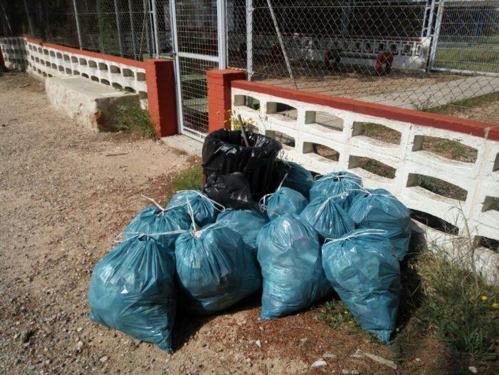 Voluntaris d'un Programa Europeu realitzen tasques de conservació de la natura