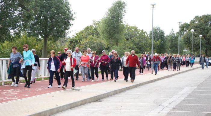 Els majors participen de la II Ruta Saludable a Picassent