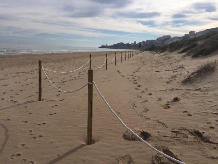 Cullera ja disposa de tanques per a protegir les dunes