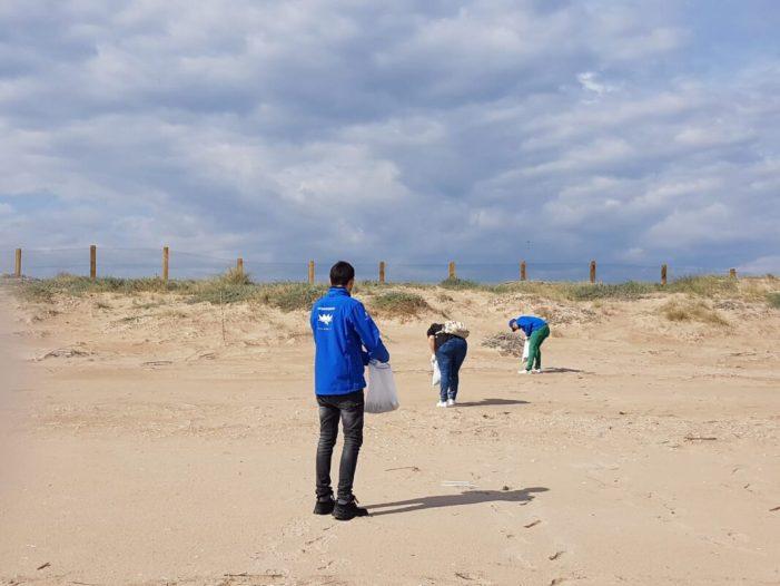 La Fundació Oceanogràfic participa en l'estudi científic del fem marí en El Saler