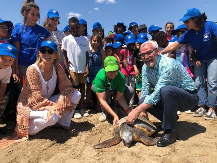 Escolars de Natzaret netegen La Patacona i solten una tortuga pel Dia dels Oceans