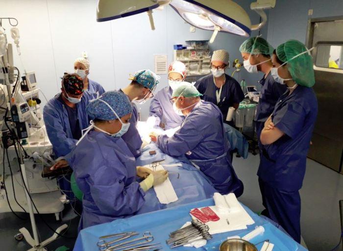 Residentes de la Comunitat Valenciana aprenen a l'Hospital de la Ribera tècniques avançades en cirurgia de mama