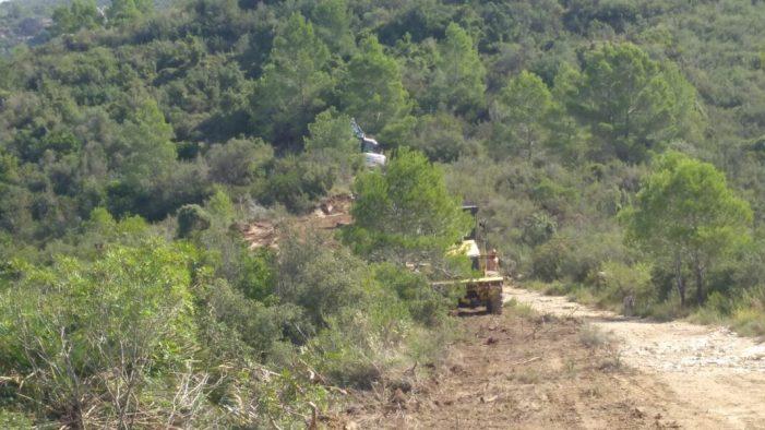 Alzira comença les obres de condicionament de les pistes forestals de la Murta