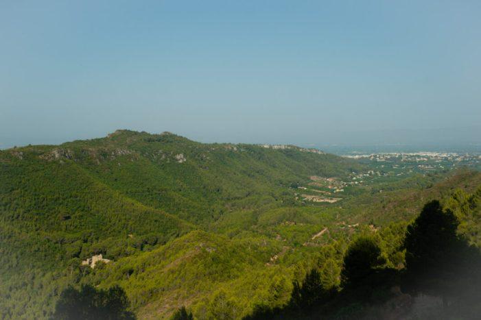 L'Ajuntament d'Alzira i Alzicoop donen suport a un projecte pilot d'interés general per al camp