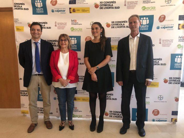 Mireia Mollà qüestiona el 'lobby' pro-sud-africà i advoca per la defensa 'sense fissures' de la citricultura valenciana