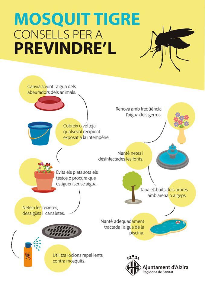 Continua el tractament per a pal·liar el mosquit tigre a Alzira
