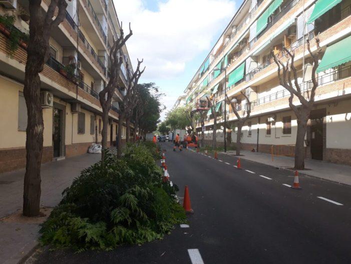 Alfafar duu a terme millores en la via i els espais públics