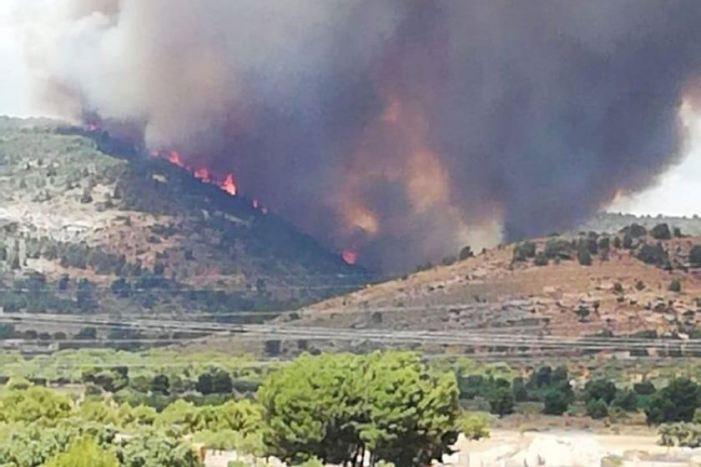 La Generalitat coordina un dispositiu de més de mil efectius dins del Pla contra Incendis Forestals previst per a aquest estiu 2020