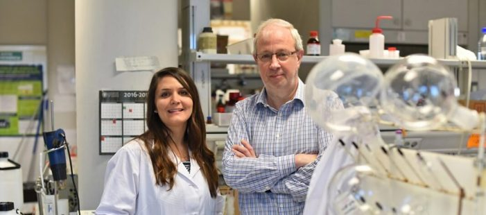 Proven un nou fàrmac que elimina les cèl·lules senescentes i redueix la toxicitat en el tractament del càncer