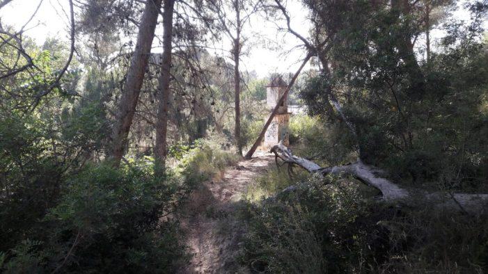 Podemos Paterna exigeix a l'ajuntament el manteniment dels espais naturals