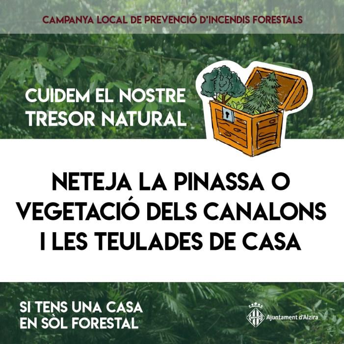 Cuidem el nostre tresor natural, és la campanya de l'Ajuntament d'Alzira per a previndre incendis forestals