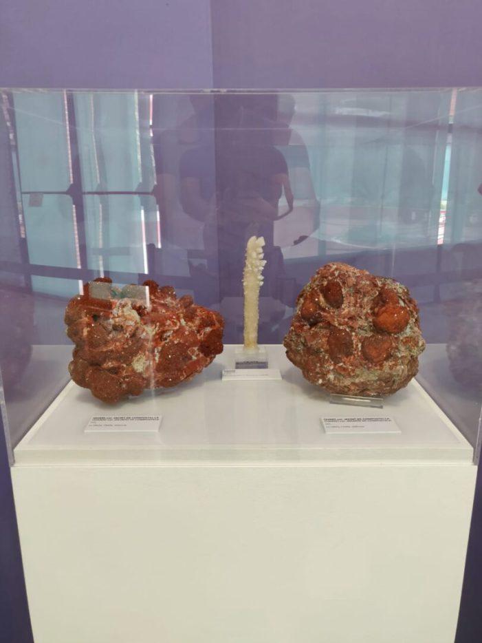 Els minerals i mines valencianes arriben al Museu de Ciències Naturals de l'Ajuntament de València