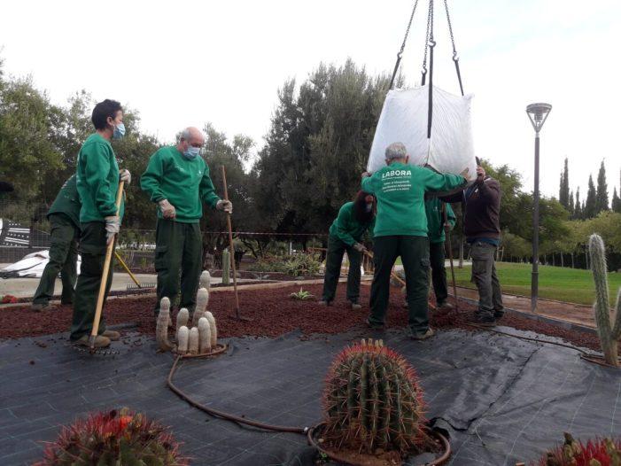 L'Ajuntament d'Alaquàs ha realitzat durant els últimes mesos diversos treballs d'enjardinament en diferents espais del municipi