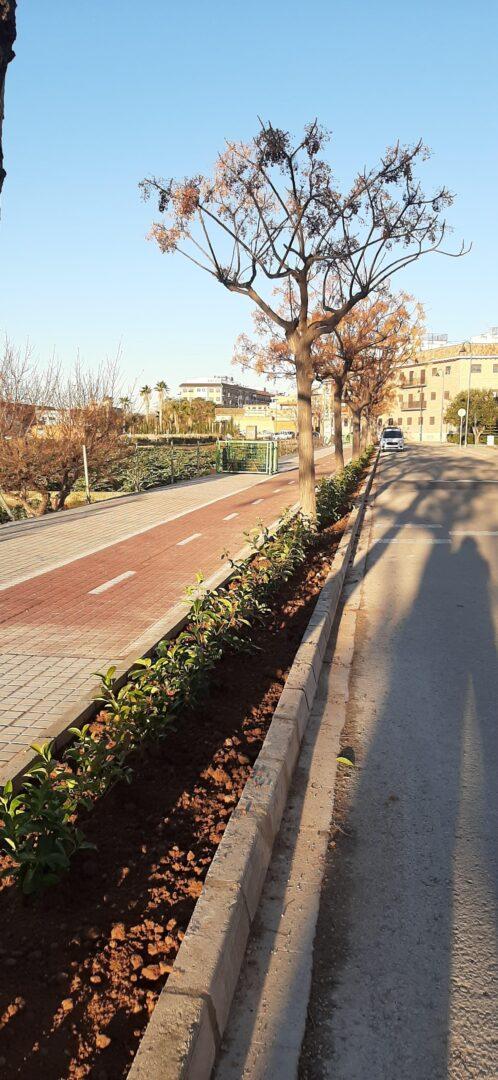 L'Ajuntament de Meliana millora la vorera del c/ l'Horta
