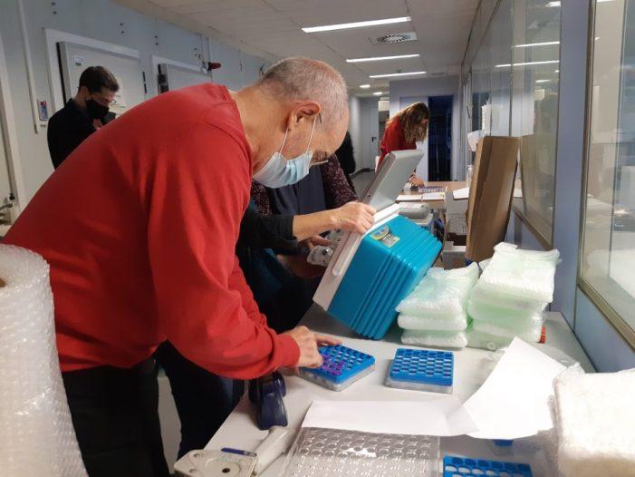 L'Ajuntament de València no registra persones contagiades ni en quarantena entre el personal municipal per primera vegada des de l'inici de la pandèmia