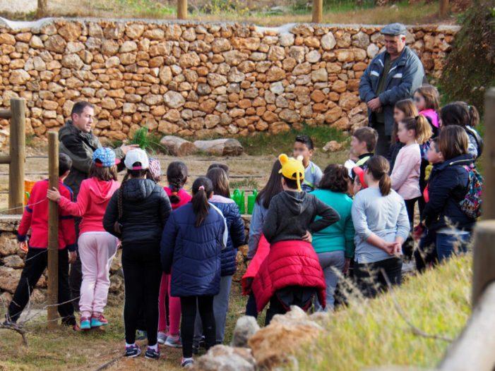 L'Ajuntament de Carcaixent  ofereix activitats extraescolars gratuïtes