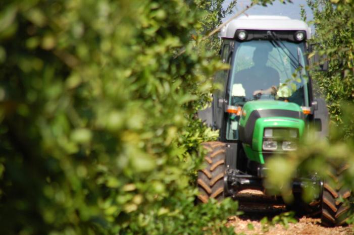 LA UNIÓ de Llauradors i Ramaders demana habilitar més fons per a cobrir la demanda del Pla Renove de maquinària agrícola que s'ha esgotat en una hora