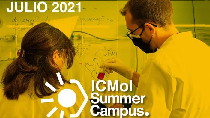L'Institut de Ciència Molecular posa en marxa el seu Summer Campus destinat a estudiants de Grau