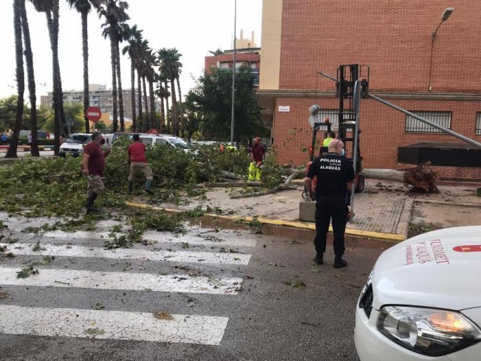 L'episodi de pluges torrencials i vent fort registrat ahir al municipi d'Alaquàs no ha provocat danys personals però si importants desperfectes
