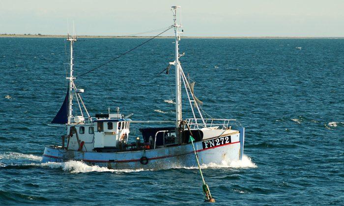 El Ministeri d'Agricultura, Pesca i Alimentació convoca subvencions per 520.000 euros per a entitats associatives del sector pesquer