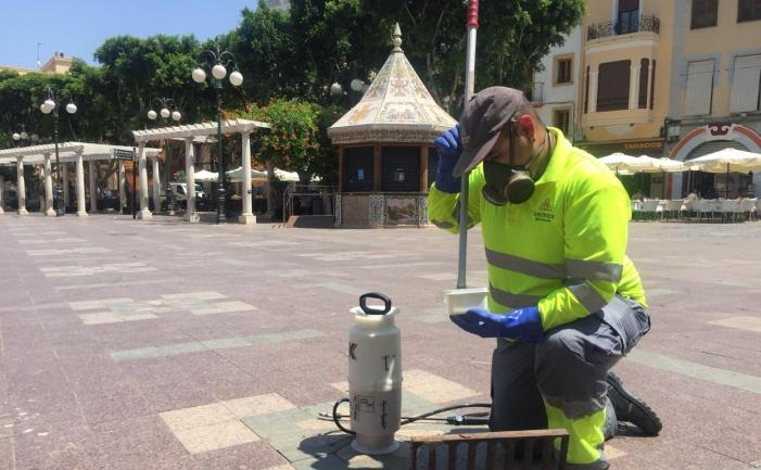 Esta setmana continuen els tractaments per al mosquit tigre a Alzira