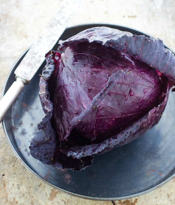 Insalata di cavolo cappuccio viola e tofu affumicato