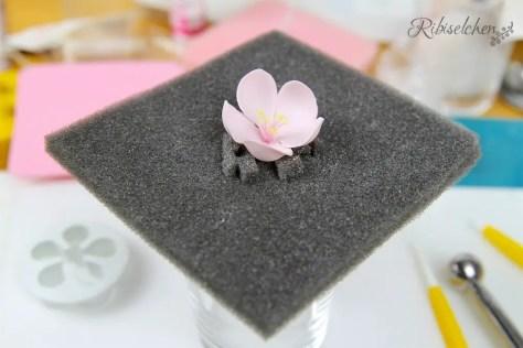 Zuckerblüte aus Blütenpaste
