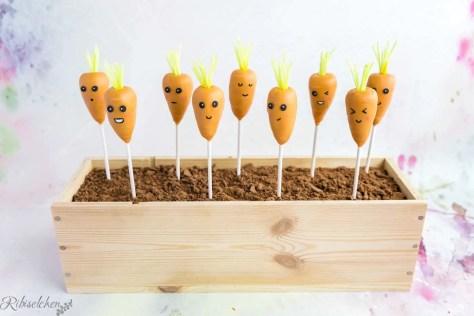 Die fertigen Karotten Cake Pops