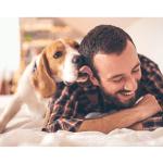 Por que meu cachorro me lambe, ricardo tamborini, adestrador, especialista em comportamento canino