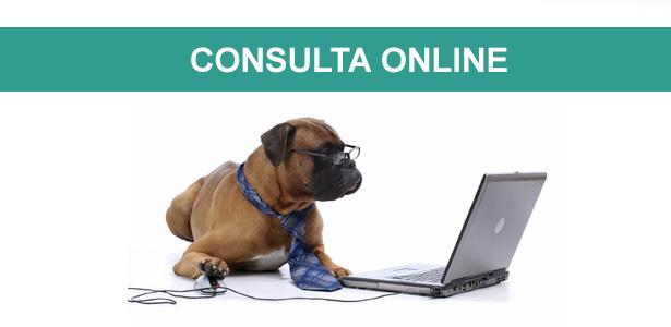 Consulta comportamental online