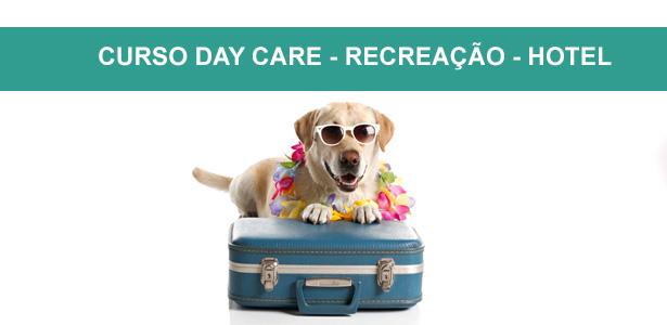 Curso Day Care - Recreação e Hotel, cursos de adestramento e comportamento