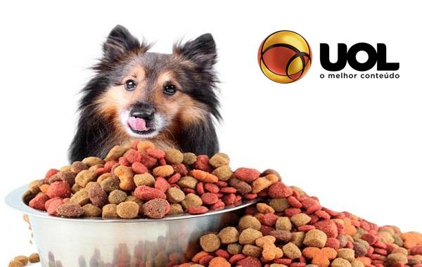 Seu cão come muito ou rápido demais? Saiba como ajudá-lo!
