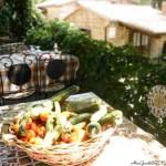 10 Ricette Vegetariane estive light e veloci | 10 Vegetarian healthy recipes for summer