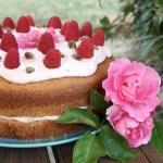 Torta fluffosa al pistacchio e lamponi | Pistachio raspberry chiffon cake