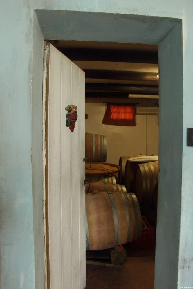 produttori-vini-rimini-tenuta-santini-coriano