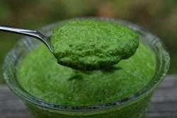 Salsa Verde piacentina