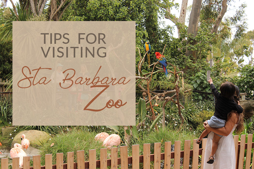 TIPS FOR VISITING STA BARBARA ZOO