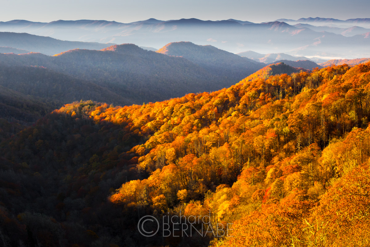 "The Smoky Mountains National Park is also my ""home park"" and the place  where I honed my photography skills many years ago. 8432f5292"