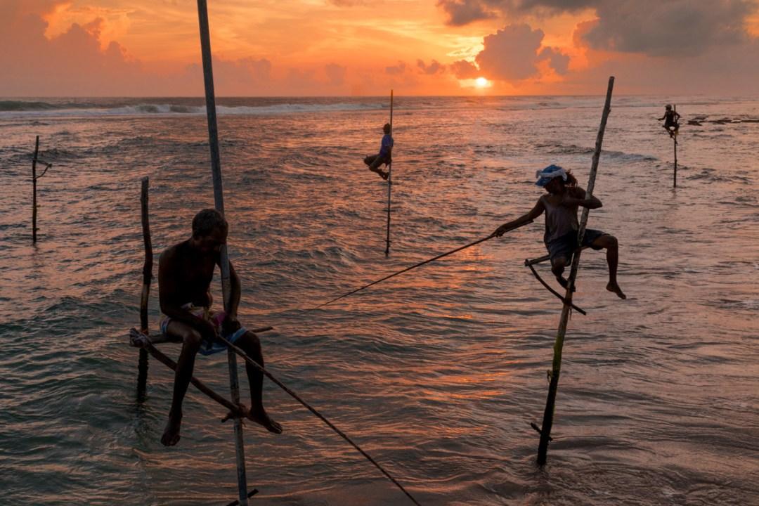 Stilt fishermen at sunset, Unawatuna, Sri Lanka