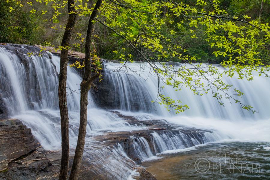 Hooker Falls in Spring