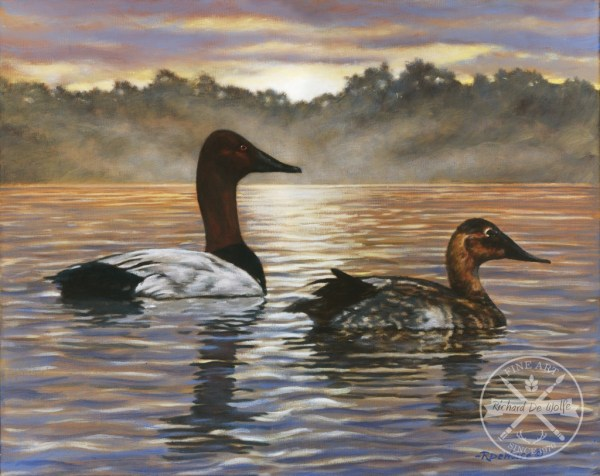 Dawn's Early Light Canvas Back Ducks