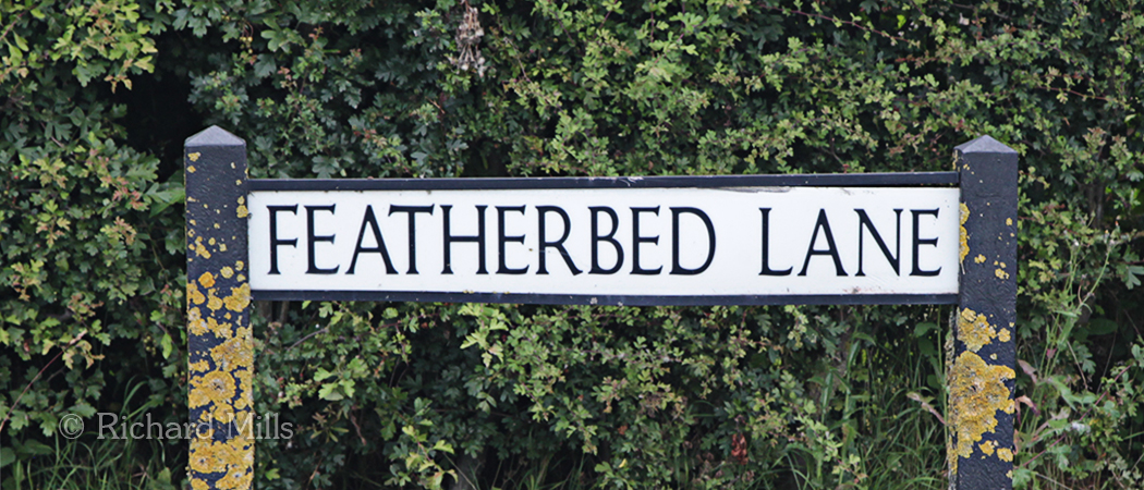 Featherbed Lane
