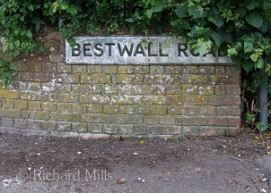 Best Wall Road