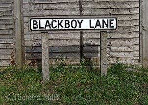 Blackboy-Lane