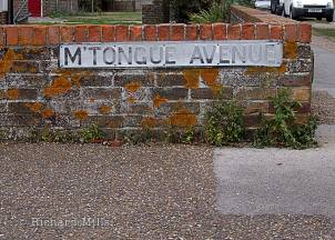 M'Tongue-Avenue---Emsworth---Bosham---Oct-'09-09-e-©