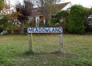 Meadowland---Selsey---Oct-11-018-e-©