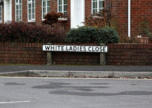 White-Ladies-Close