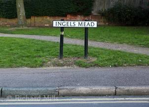 Ingels-Mead---Waltham-Cross---Jan-2012-60-e-©